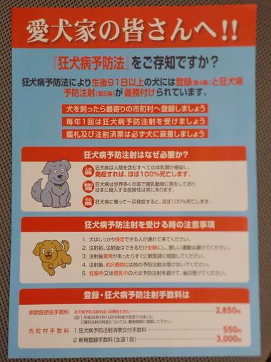 ワンちゃんの狂犬病予防注射♪
