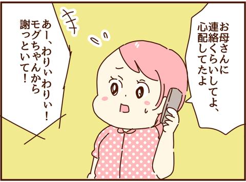 かおここ217