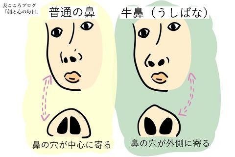 表こころブログ_キレやすい頭に血がのぼりやすい牛鼻3