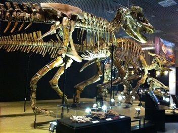 大恐竜展_201401sm