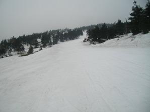 IMGP4527