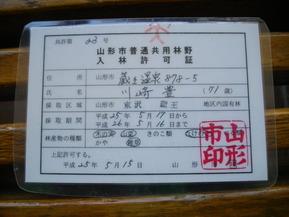 IMGP0534