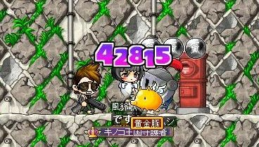 Maple130608_103855