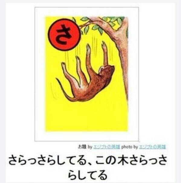f0e0a4d8.jpg