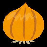 tamanegi_onion+(1)