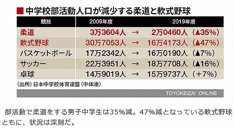 柔道野球スポーツ人口の減衰