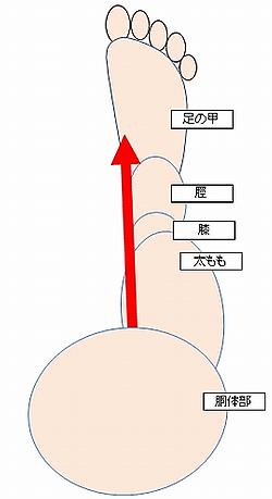軸 ラボ 身体