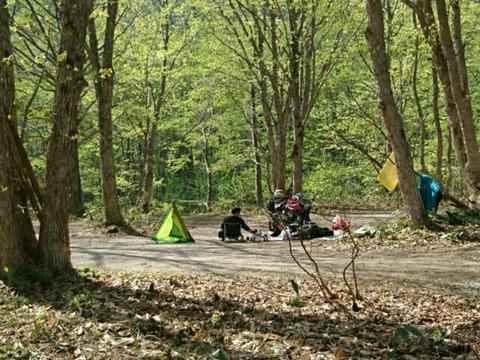 朝のキャンプサイト