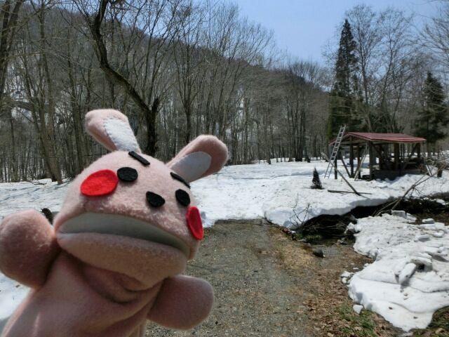 雪上キャンプ1号!!