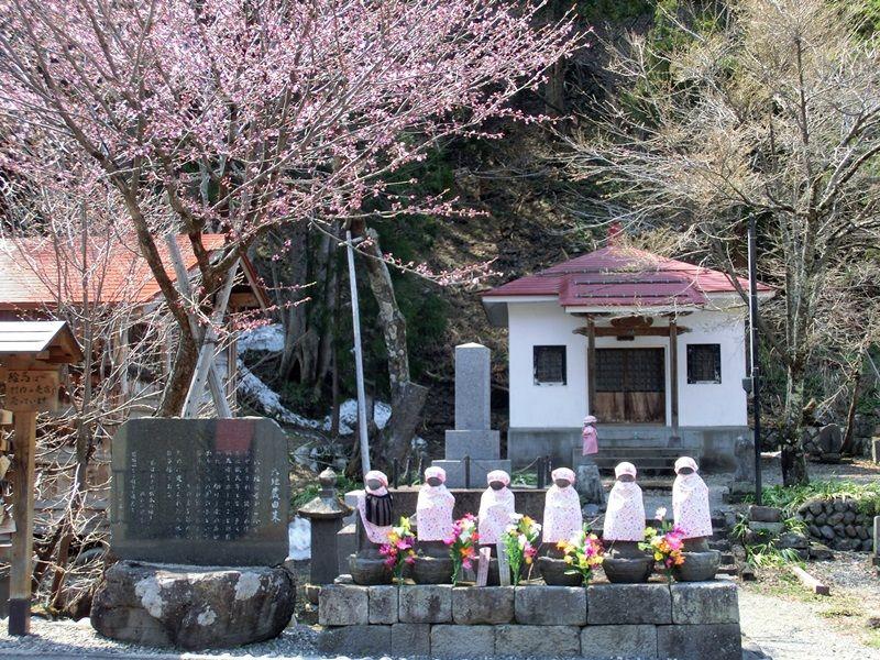 待ち遠しい~桜の季節♪
