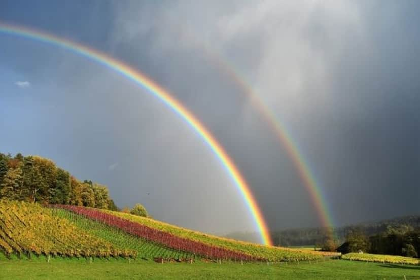 rainbow_pixabay
