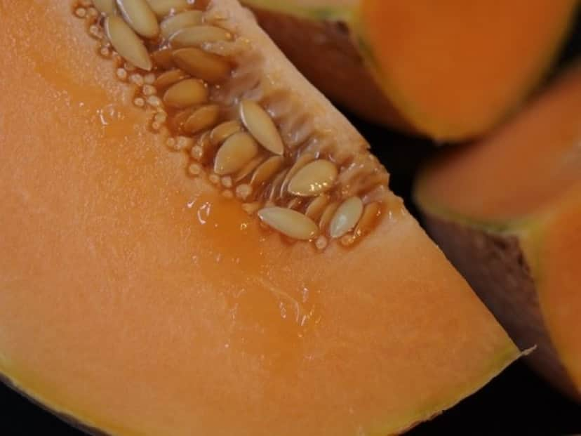 melon-1565567_640_e