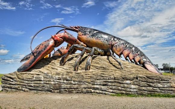 lobster-2358898_640_e