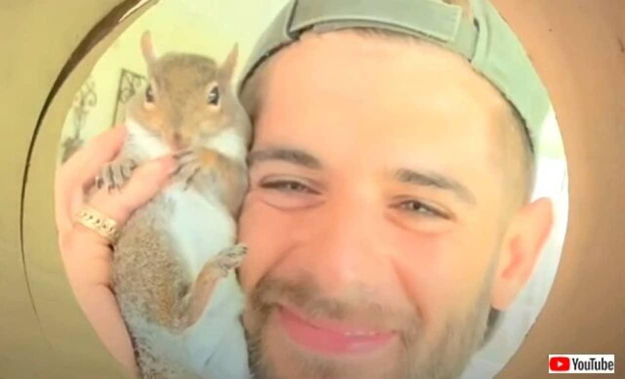 rescuesquirrel0_640