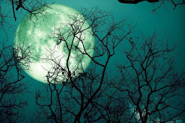8月の満月はスタージェンムーン