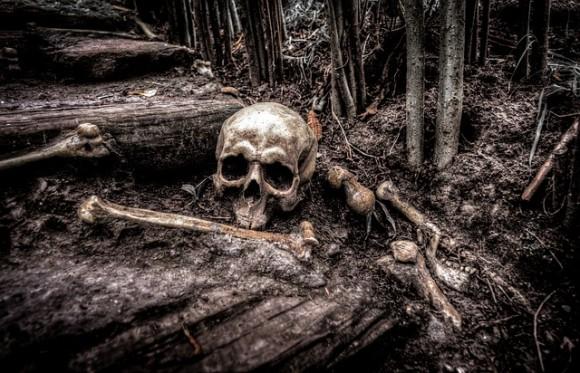 メキシコのアパート近くの埋め立て地から、行方不明者のものとみられる2千以上のバラバラになった人骨が発見される