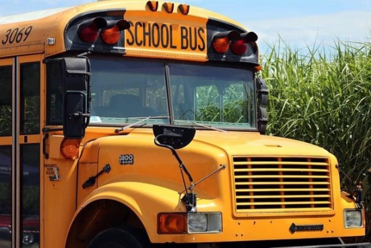 スクールバスがバスジャックに!ところが犯人は全員解放して逃げてしまう