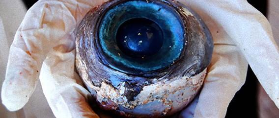 フロリダの海岸に流れ着いた謎の巨大な眼球。いったい誰が落としたのか?(追記:持ち主判明)