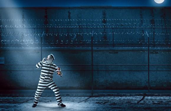 """人は""""概念の囚人""""である。脳は生存のために現実の断片のみを認識する"""