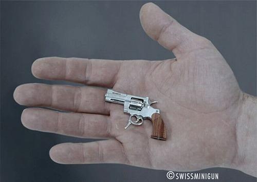 smallest_gun_06