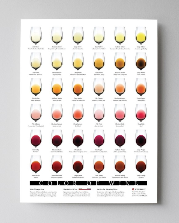 Wine-Color-Chart-18x24WineFOlly_1024x1024_e