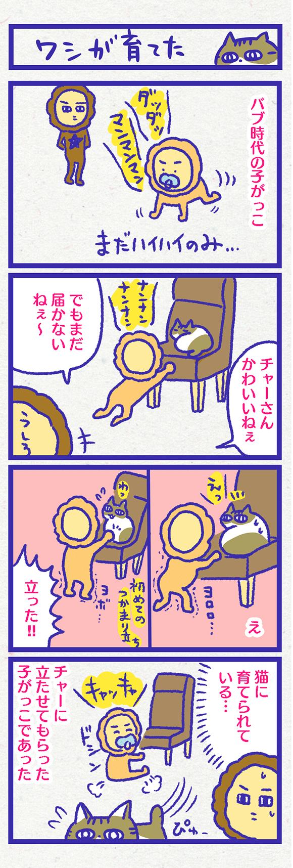 ib3704