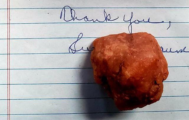 「これは呪いの石です」アメリカの自然公園宛てに突如届いた石と手紙