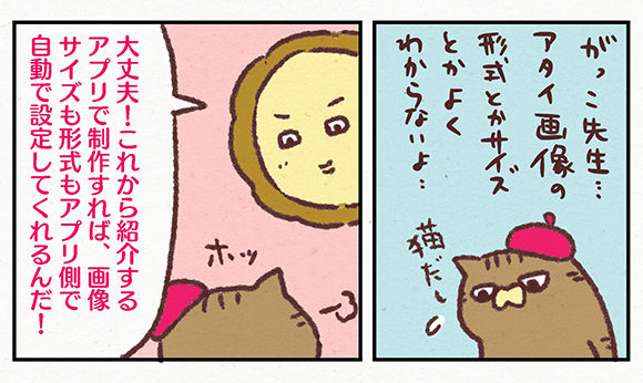 ibib20022
