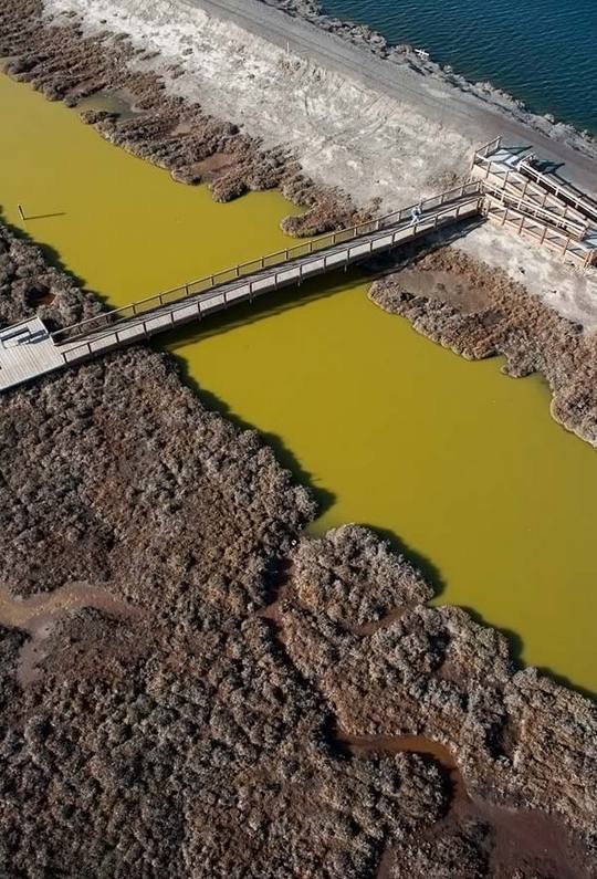 colored-salt-ponds-06