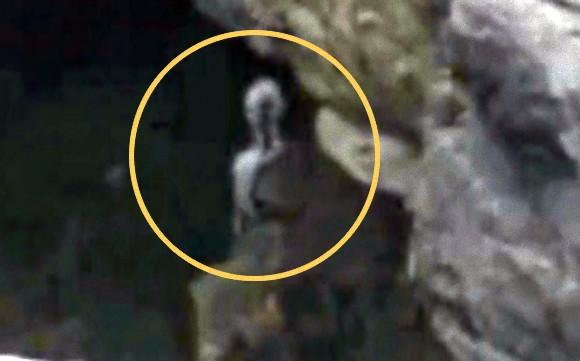 マチュピチュの岩陰にタイプグレーの異星人だと?これってリアル?フェイク?