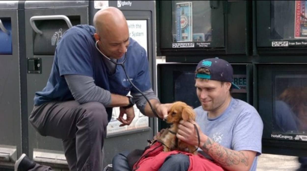 ホームレスの犬を無償で診療する獣医