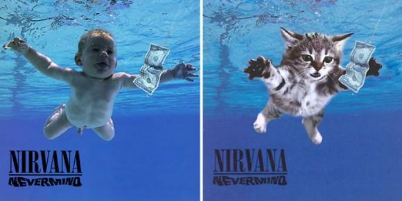 あの有名なアルバムのジャケットをすべて猫に置き換えてみた「The Kitten Covers」