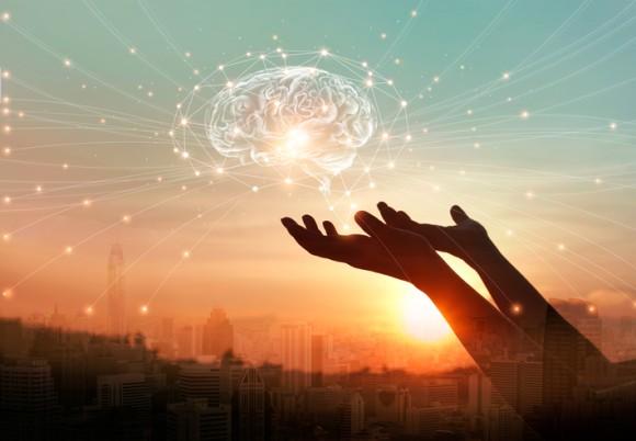 人工的に作られたヒトの大脳で神経活動が確認される(日本研究)