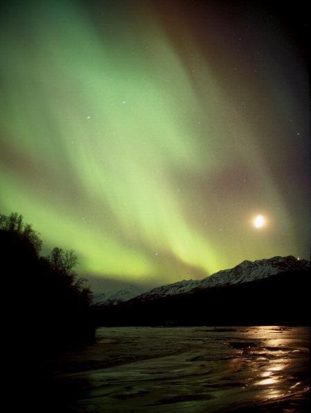 aurora borealis (10)
