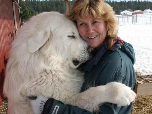 抱かれたい、抱きしめたい。スキンシップで心を通わせる犬と人間のあったかい写真