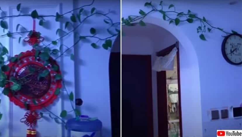 部屋がジャングル