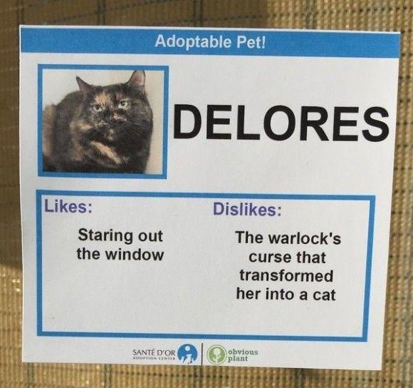Delores_e