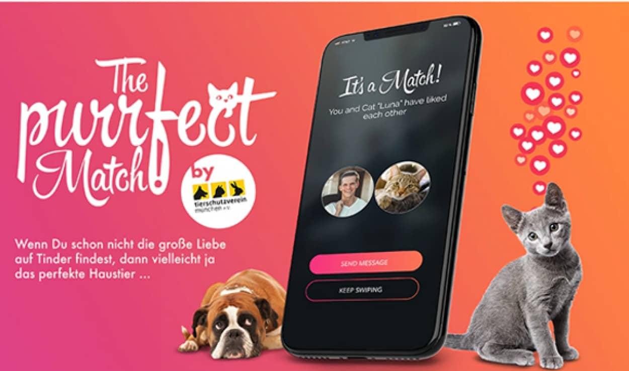マッチングアプリを利用して飼い主とペットを繋ぐ取り組みを始めたドイツ