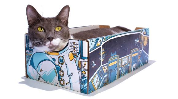 猫は箱が好きだから・・・猫が入ると変身できる「顔出し看板風」ダンボール箱が制作される