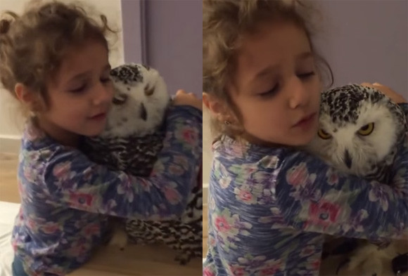 シロフクロウをやさしく抱きしめる少女とその期