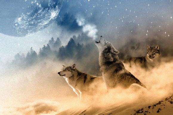 新年最初の満月「ウルフムーン」は1月11日、半影月食とともにやってくる