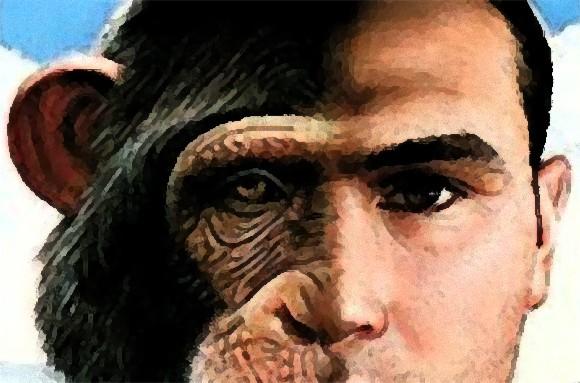 ヒトとチンパンジーのハイブリッド「ヒューマンジー」を作る技術はすでにある(米研究者)