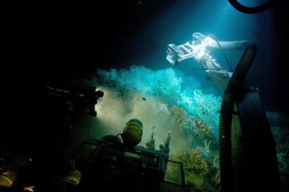 深海ファンタジー。海の最深部「...
