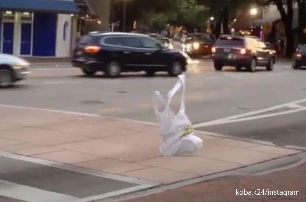 レジ袋が究極進化!?自らの意志を持ってスタスタと歩道を歩いているようにしか見えない映像