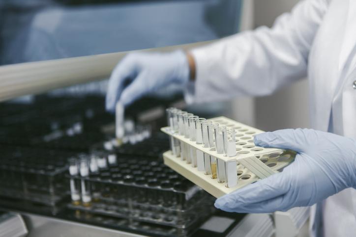 バクテリア実験