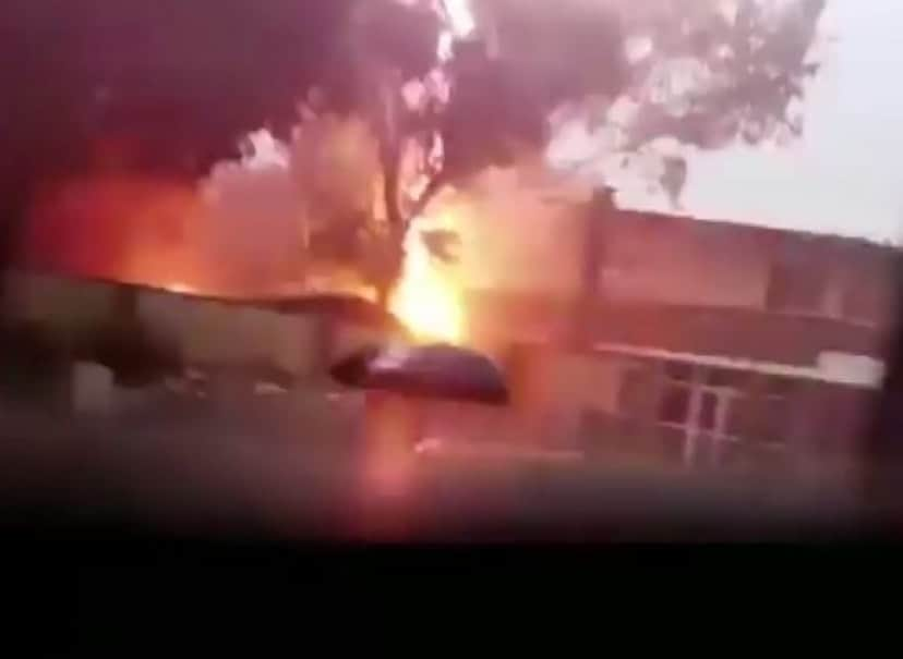 burning_tree