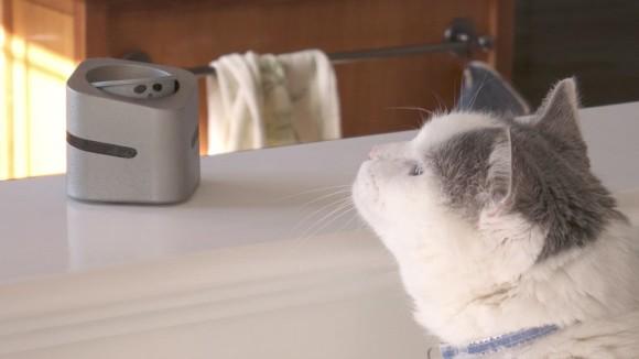 猫のテーブルに飛び乗りを防ぐロボット「キャットナーニ」がクラウドファンディングで資金調達されていた