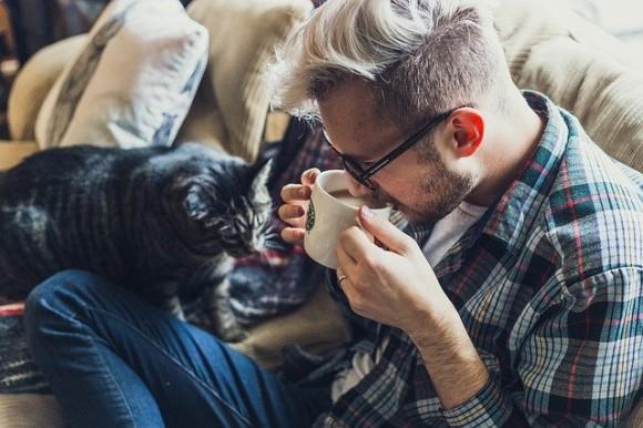 ネコと和解せよ。無宗教者の方が猫を飼っている確率が高いことが判明(アメリカ研究)