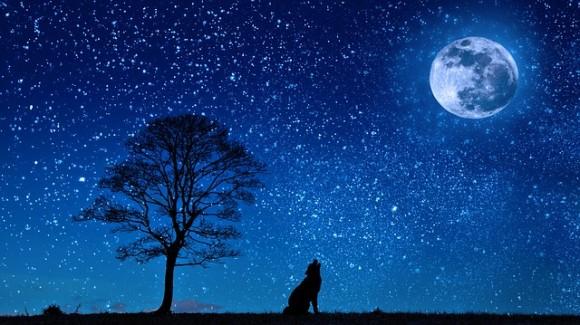 「月に行く時が来た」AmazonのCEO、ジェフ・ベゾスが月面都市(コロニー)の設立を目指す