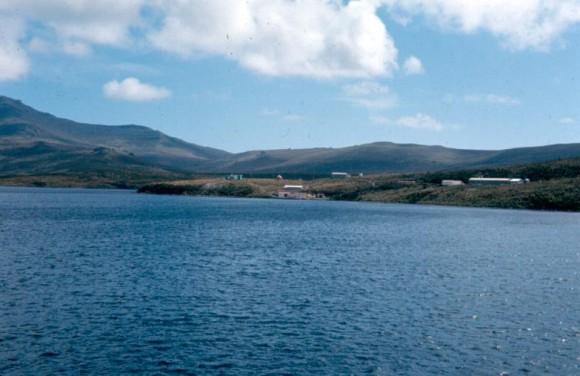 Baxter-Campbell-Island_e